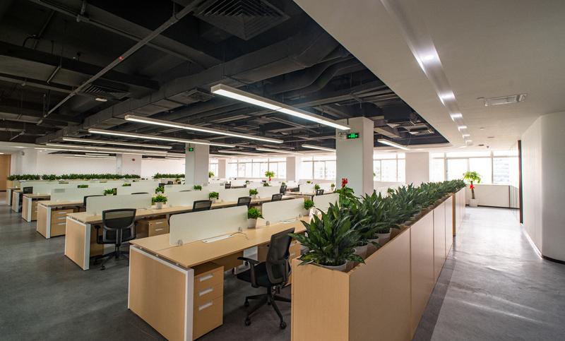 环保性办公室装修一定是从下面几个方向下手
