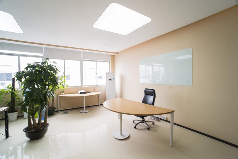 深圳办公室装修后这几种植物不可少